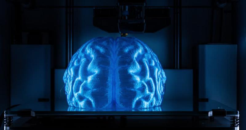 تهیه مدل کاملا دقیق سه بعدی از مغز انسان